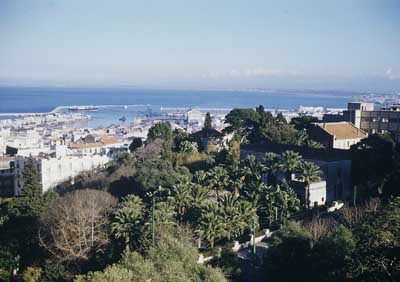 Alger-panorama-small