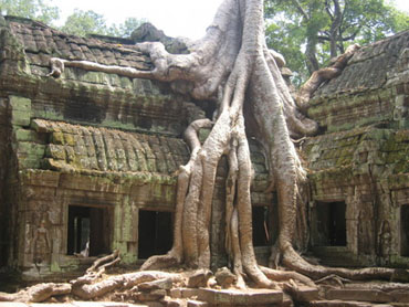 Angkor-small